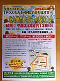 20120513himawari